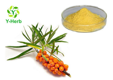 Healthy Seabuckthorn Powdered Fruit Juice Concentrate Sea Buckthorn Berry Extract