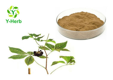 Pure Eleuthero Root 0.8% 1.0% 1.2% Eleutheroside B+E Powder Siberian Ginseng Extract