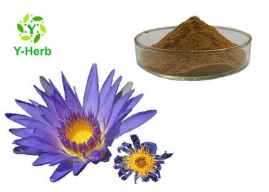 Pure Organic Nymphaea Caerulea Flower Powder 10:1 50:1 100:1 Blue Lotus Extract
