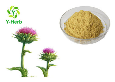 CAS 65666-07-1 Water Soluble 80% Silymarin Silybin Powder Milk Thistle Seed Extract