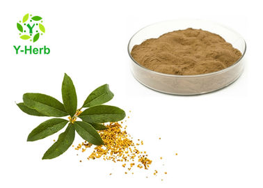 Sweet-Scented Organic Flower Powder 10:1 50:1 Bulk Osmanthus Fragrans Lour Extract