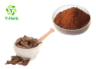 China Pinus Pinaster P.E. Oligomeric Proanthocyanidines Pine Bark Extract Powder 95% OPC supplier