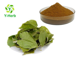 Epimedium Extract Icariin Sexual Enhancement Ingredients Honey Goat Weed Extract