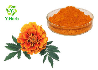 China Xanthophyll Marigold Flower Herbal Extract Powder 5%-90% Lutein Esters Powder supplier