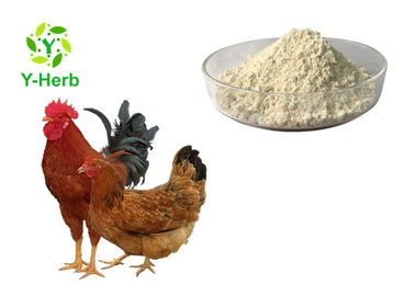 China Feed Grade Thermostable Phytase Powder Enzyme For Livestock Additive CAS 9001-89-2 supplier