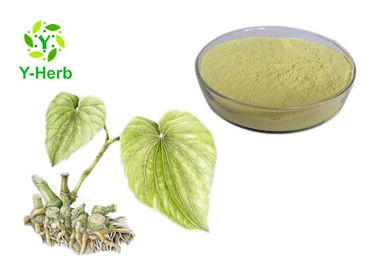 China Medical Grade Kava Root Extract Water Soluble Yellow Fine Powder 2 Years Shelf Life supplier
