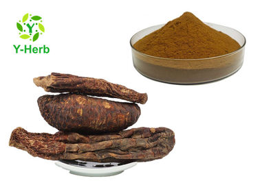 China Cistanche Tubulosa Extract Powder Glycosides Echinacoside Verbascoside Acteoside distributor