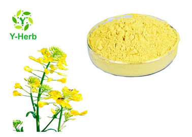 China Fresh Organic  Bee Pollen Powder 100% Rape Flower Extract 18% Protein factory