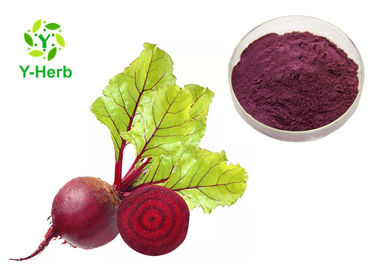 China Beetroot Red Beet Root Extract Powder Sugar Factory Use Anti Tumor Natural Pigment distributor
