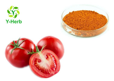 China Raw Vegetable Extract Powder AD Spray Dried Dehydrated Tomato Powder distributor