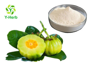 China HCA Weight Loss Supplement Powder 50% 60% Hydroxycitric Acid Garcinia Cambogia Extract factory