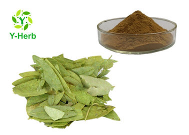 China Sennosides A+B Powder Senna Alexandrina Leaf Extract Cassia Angustifolia 8%-20% factory