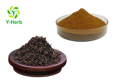 China Instant Pu Erh Tea Extract Water Soluble Puer Leaf Powder Bulk Polyphenlos factory