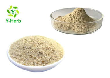 China Replacement Food Additive Bulk Fiber Extract Organic Seed Psyllium Husk Powder factory
