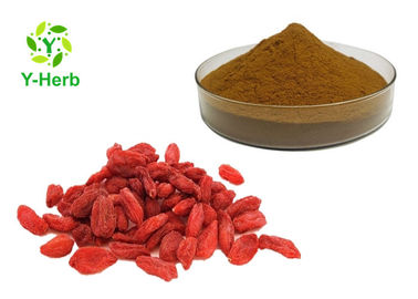 China 40% 50% Goji Berry Powder Wolfberry Extract Lycium Barbarum Tibet Polysaccharide factory