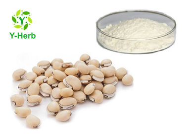 China Phaseolin Weight Loss Supplement Powder Phaseolus Vulgaris Linm White Kidney Bean Extract distributor