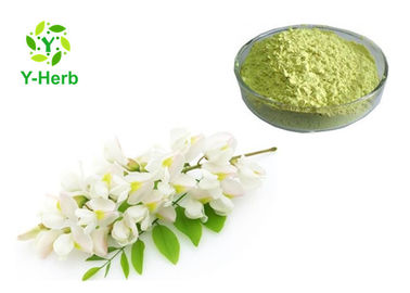 China Organic Quercetin Powder 98% Fruit Flower Anhydrous Sophora Japonica Extract distributor