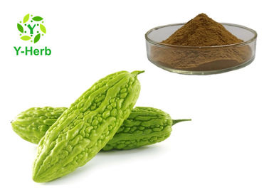 China P.E. Bitter Melon Extract Powder 10% 20% Bitter Gourd Balsampear Fruit Charantin factory