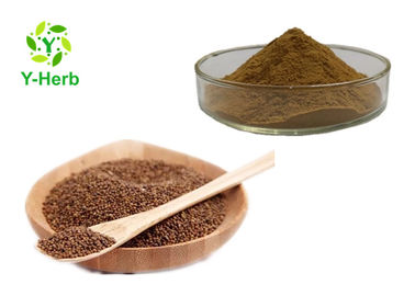 China Chinese Dodder Seed Extract Powder Traditional Semen Cuscuta Chinensis  80 Mesh factory