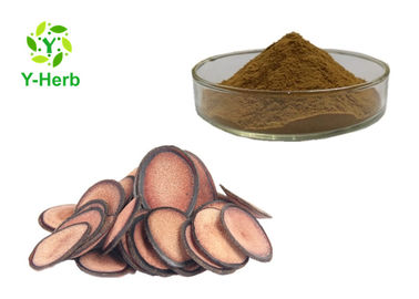 China P.E. Cartialgenous Deer Antler Velvet Extract Powder Cornu Cervi Pantotrichum Extract distributor