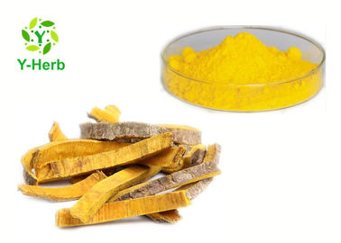 China HCL 97% 98% Berberine Hydrochloride Goldenseal Root Coptis Chinensis Extract distributor