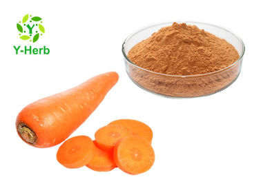 China Organic Vegetable Extract Powder Bulk Dehydrated Dried Carrot Fiber Powder distributor