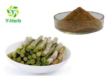 China Brown Fine Caulis Dendrobii Extract Powder Dendrobium Officinale Herb Root P.E. factory