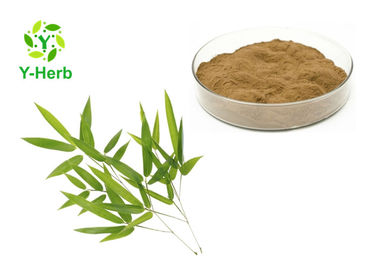 China 80 - 200 Mesh Herbal Extract Powder Pure Natural Lophatherum Leaf Extract Powder factory