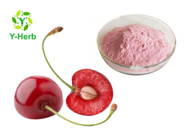 China Organic Acerola Berry Extract Powder VC 17% 25% Malpighia Glabra For Health Care Products factory