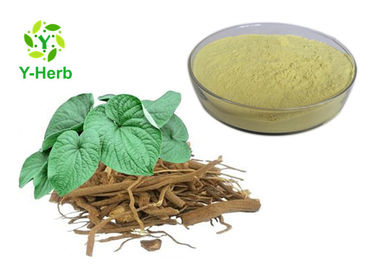 China Y-Herb Kava Leaf Extract From Natural Herbs 30% - 70% Kavalactones CAS 9000-38-8 factory