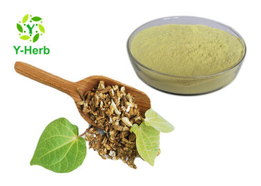 China Organic Kava Root Extract Powder 30% 70% Pharmaceutical For Energy Drink factory