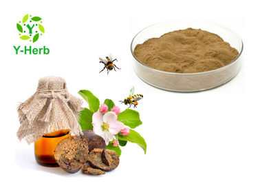 China Water Soluble Propolis Bulk Food Grade Brown Fine Powder 10% - 90% Uv Test factory